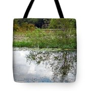 Tree Reflecting In Pond Tote Bag