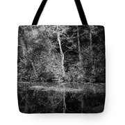 Tree Reflection In Chesapeake And Ohio Canal Tote Bag