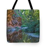 Tree Reflection Tote Bag