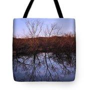 tree reflection on Wv pond Tote Bag