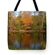 Tree Reflects Into The River Tote Bag