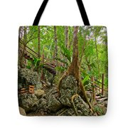 Tree Roots On Rock Tote Bag