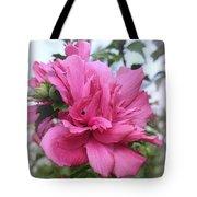 Tree Rose Of Sharon Tote Bag