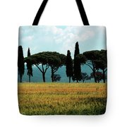 Tree Row In Tuscany Tote Bag