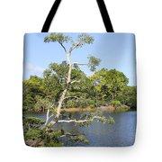 Tree Series 43 Tote Bag