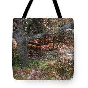 Tree Series 46 Tote Bag