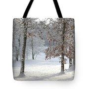 Tree Shadows Tote Bag