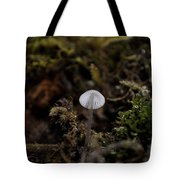 Tree 'shroom Tote Bag