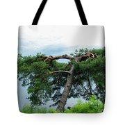 Tree Struck By Lightning Tote Bag