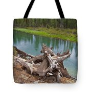 Tree Stump In Des Chutes Nf-or Tote Bag