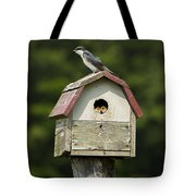 Tree Swallow With Young Tote Bag