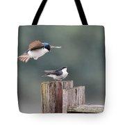 Tree Swallows Mating 1 Tote Bag