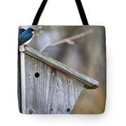 Tree Swallows On Birdhouse Tote Bag