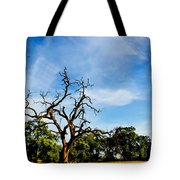 Tree Timestack Tote Bag