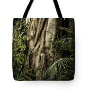 Tree Trunk And Ferns Tote Bag