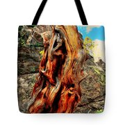 Tree Trunk Tote Bag by Kathleen Struckle