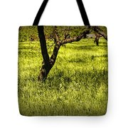 Tree Trunks In A Peach Orchard Tote Bag