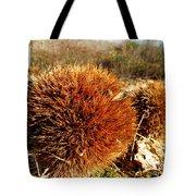 Tree Urchin Tote Bag