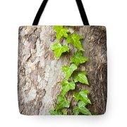 Tree Vine Tote Bag