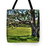 Tree With A Swing Tote Bag