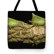 Treehoppers And Nymphs Mindo Ecuador Tote Bag