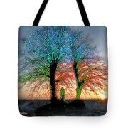 Trees Aglow Tote Bag