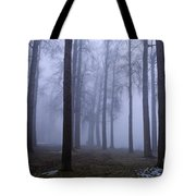 Trees Along Greenlake In Fog Tote Bag