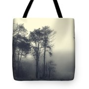 Trees And Fog At Castle Hill Tote Bag