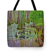 Trees And Knees In Tupelo/cypress Swamp At Mile 122 Of Natchez Trace Parkway-mississippi Tote Bag