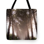 Trees And Mist Tote Bag