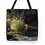 Trees And Plants At The Lakeside Tote Bag