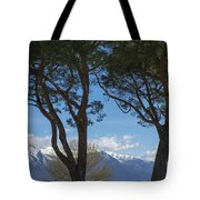 Trees And Snow-capped Mountain Tote Bag