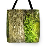 Trees At My Window Tote Bag