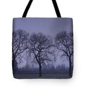 Trees At Night Tote Bag