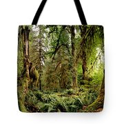 Trees At Olympic National Forest Tote Bag
