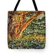 Trees At Sunset In Lafayette Park Tote Bag