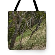 Trees At The Edge Of A Dune At Silver Lake Tote Bag