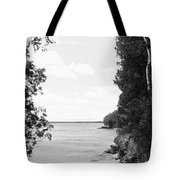 Trees At The Lakeside, Cave Point Tote Bag