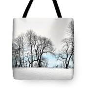 Trees At Tyler Park Tote Bag