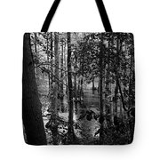 Trees Bw Tote Bag