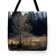 Trees By The Wayside Tote Bag