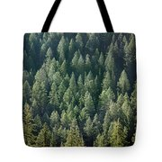 1a9502-trees Lit Up, Wy Tote Bag