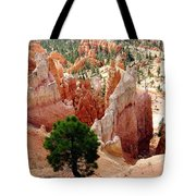 Tree's Eye View Tote Bag