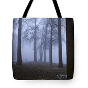 Trees Greenlake With Man Walking Tote Bag