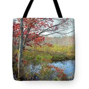 Trees In A Forest, Damariscotta Tote Bag