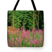 Trees In A Forest, Germany Tote Bag