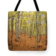 Trees In A Forest, Stephen A. Forbes Tote Bag