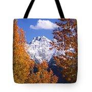 Trees In Autumn, Colorado, Usa Tote Bag