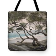Trees In Costa Rica Tote Bag