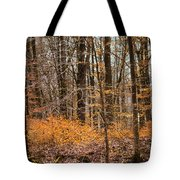 Trees In The Forest In March With Orange Leaves Tote Bag